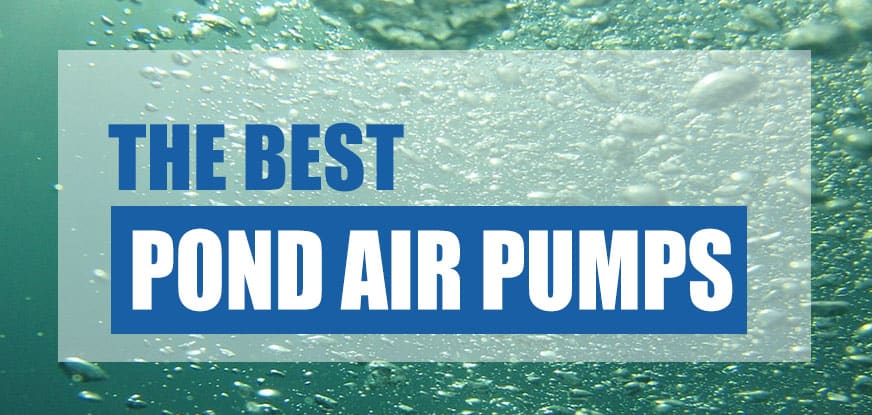 best pond air pump