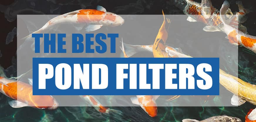 Best pond filter 2018 reviews comparison pond informer for What is the best pond filter