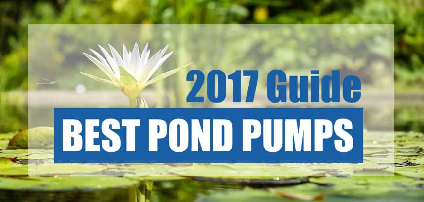The best pond pumps 2017 pond informer for Best pond pump for small pond
