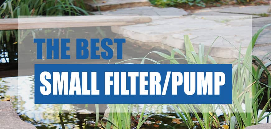 Best Small Pond Filter and Pump