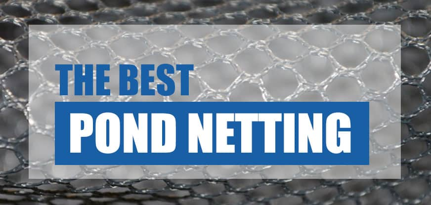 Best Pond Netting