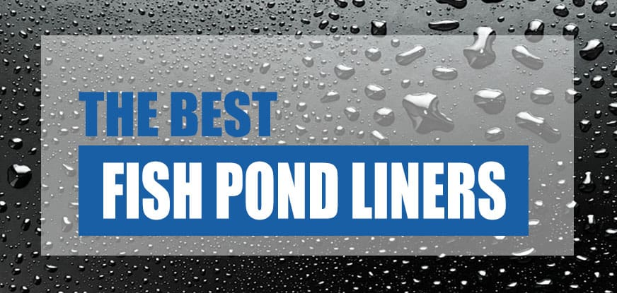 Best fish pond liners