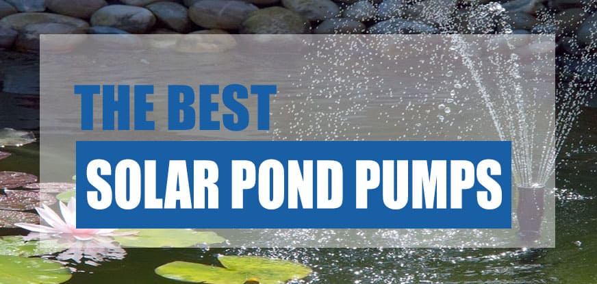 Best Solar Powered Pond Pump 2021 Reviewed Compared Pond Informer