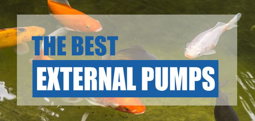 best external pond pump