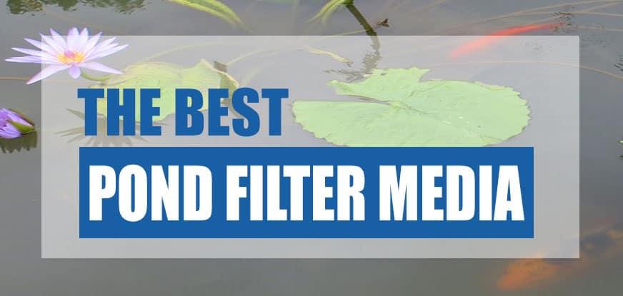 best pond filter media