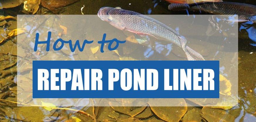 repair pond liner