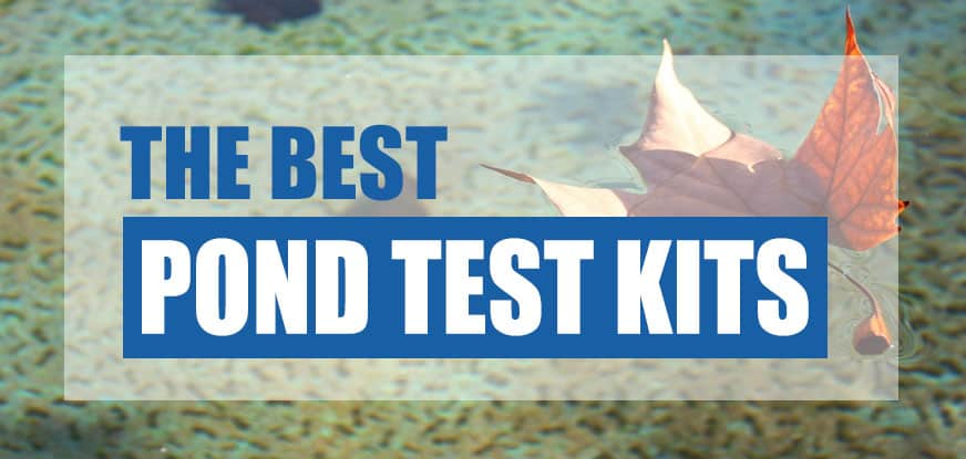 best pond water test kit