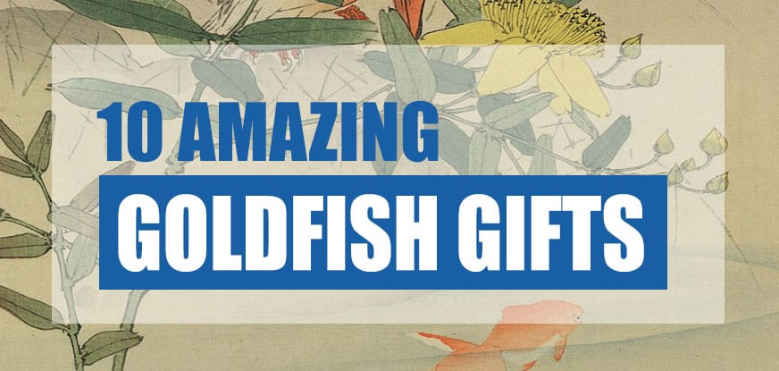 goldfish gifts ideas