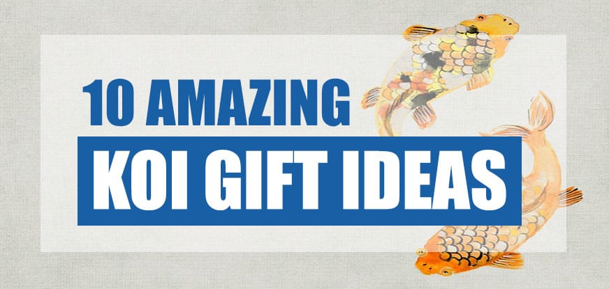 koi gifts ideas