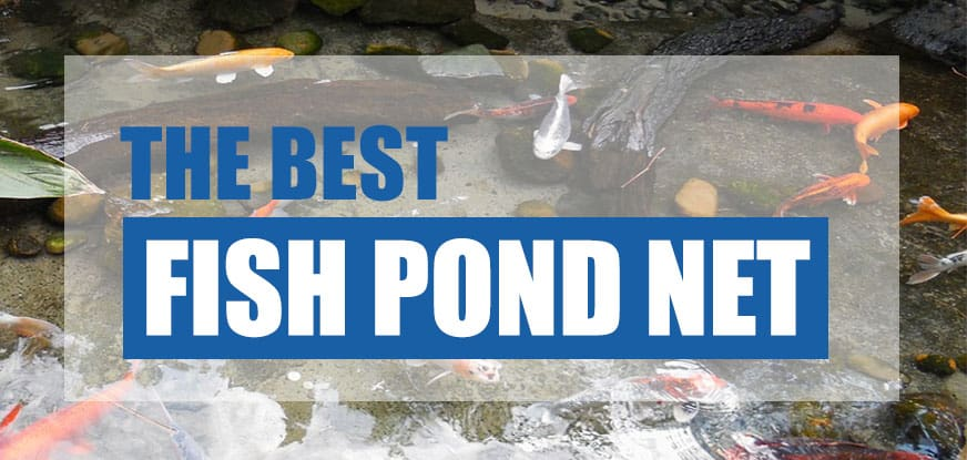 best fish pond net