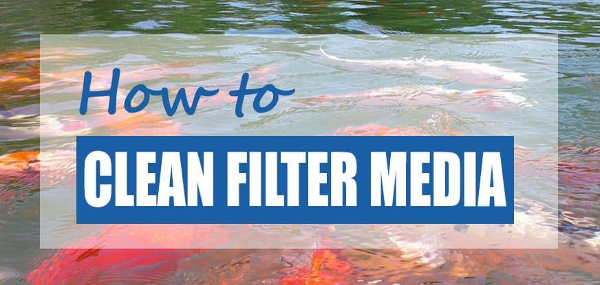 clean pond filter
