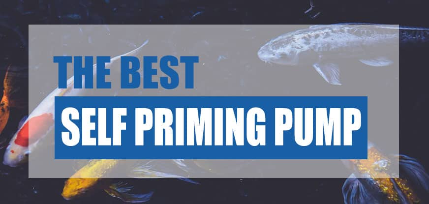 best self priming pond pump