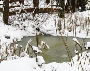 how to keep pond pump from freezing in winter