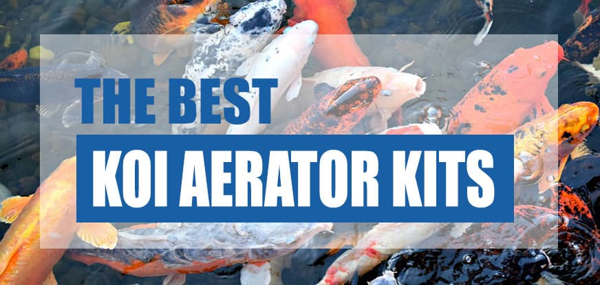 best koi pond aerator kit