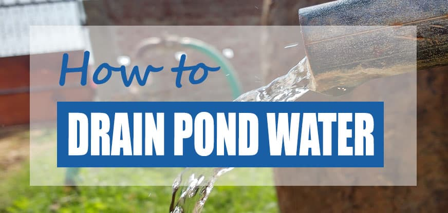 how to drain a pond