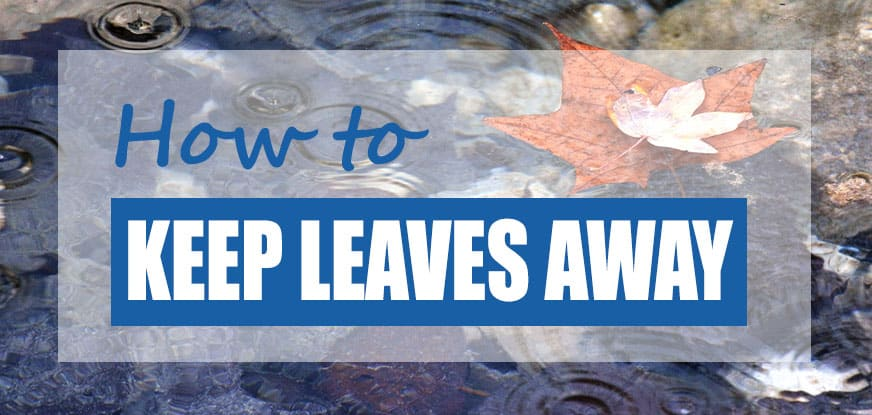 how to keep leaves out of a fish pond