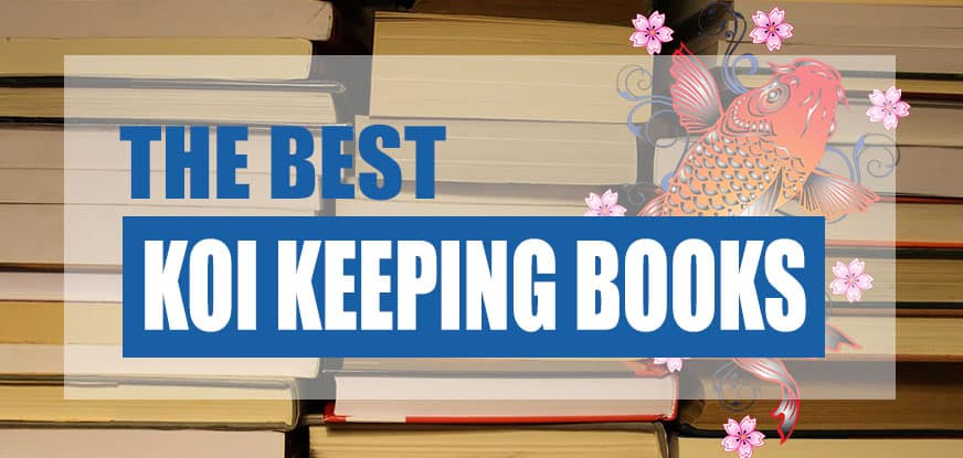 best koi carp books