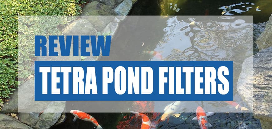 Tetra Pond Filter Reviews