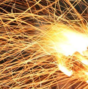 prescribed burns kill phragmites