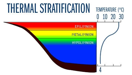 thermal stratification of ponds and lakes