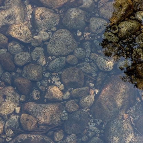Rocks and gravel at the bottom of a pond