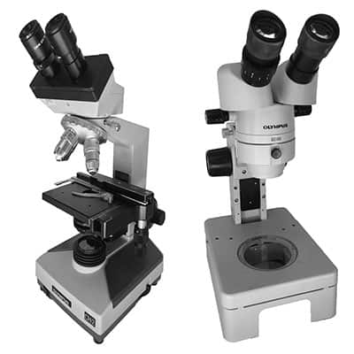 compound and dissecting microscopes that are compatible with pond use