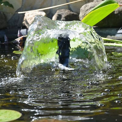 A solar powered fountain aerating a container pond