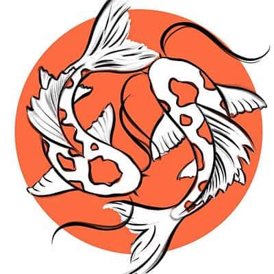 Koi symbolizing harmony, bravery, individuality, success, strength