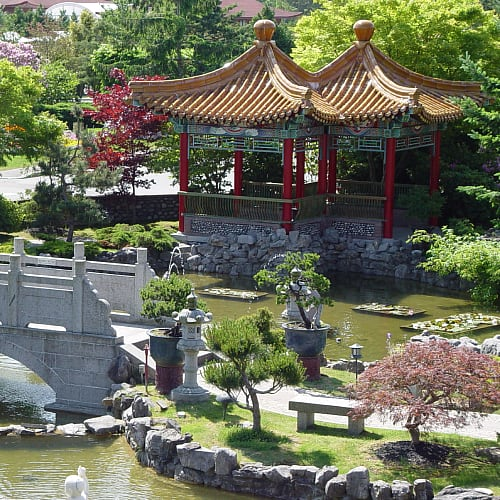 pond gardens surrounding the International Buddhist Temple