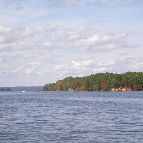 lake wateree fish species and fishing