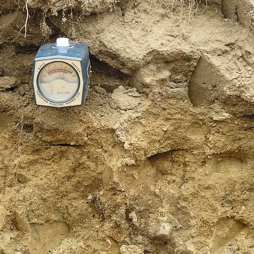 Soil pH being measured