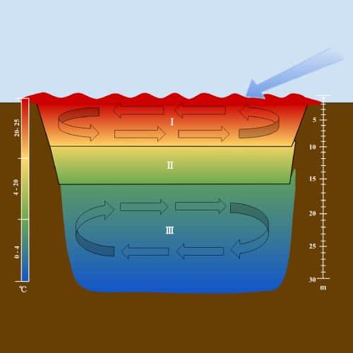 Thermal stratification in lakes diagram