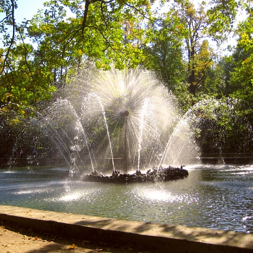 Water fountains in a pond